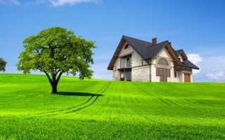 Бесплатное межевание земельного участка: как сделать и провести процедуру
