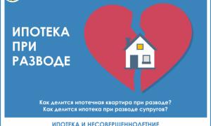 Развод и ипотека: как делится ипотека при разводе супругов, взятая в браке, раздел ипотеки что делать с кредитом