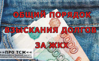 Иск по взысканию задолженности по ЖКХ: можно ли оплатить ее во время судебного разбирательства