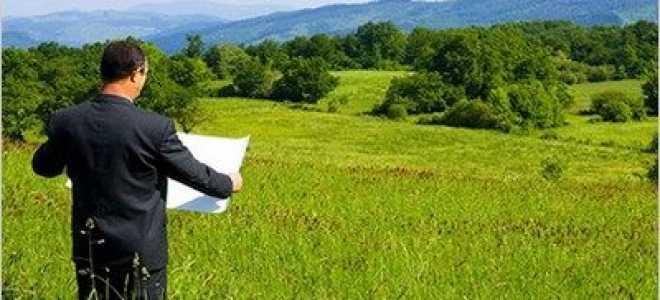 Порядок и документы приватизации садового участка в товариществе: какие бумаги нужны