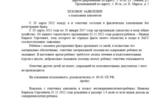 Правила составления искового заявления на алименты вне брака в 2020 году